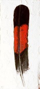 Red-tailed-Black-Cockatoo-Feather-animal-artist-art-painting-wildlife-Will-Eskridge-web
