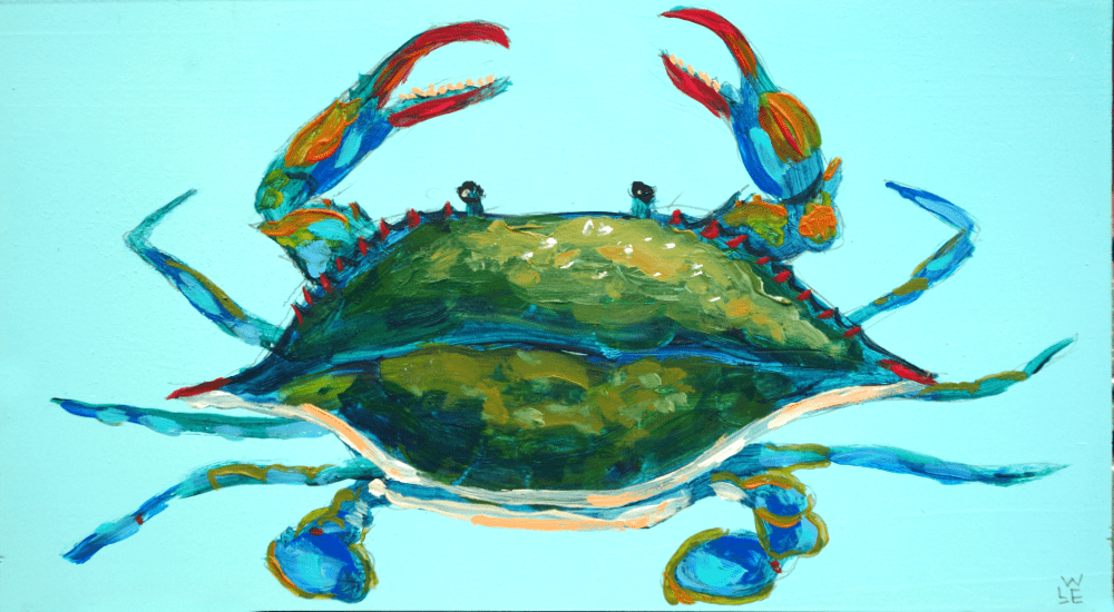 Blue Crab – Day 11