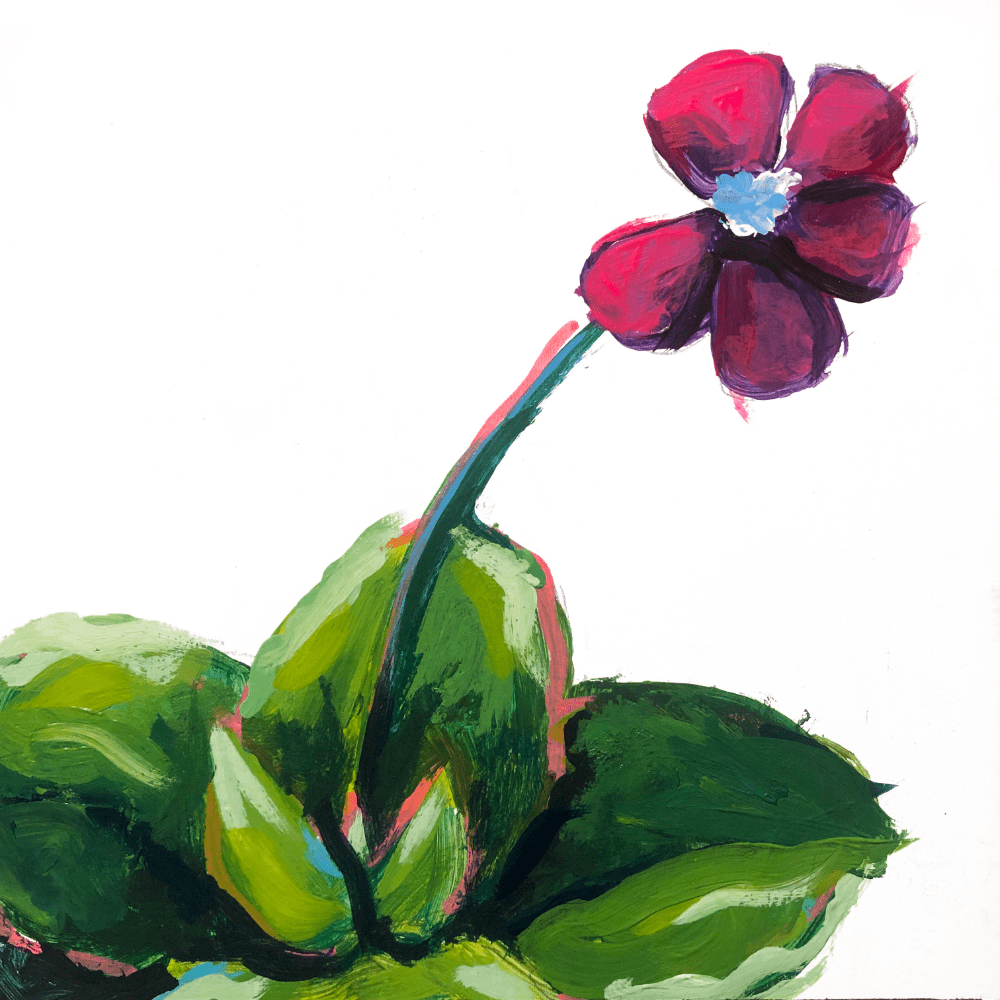 Butterwort Succulent Original Painting