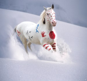 Art titled Snow Warrior. Painted War Pony running through mountain snow.