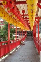 Will Hey Photography - Kek Lok Si - Monastery on Crane Hill (3 of 10)