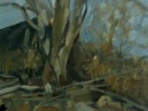 Connecticut Landscape, 2010