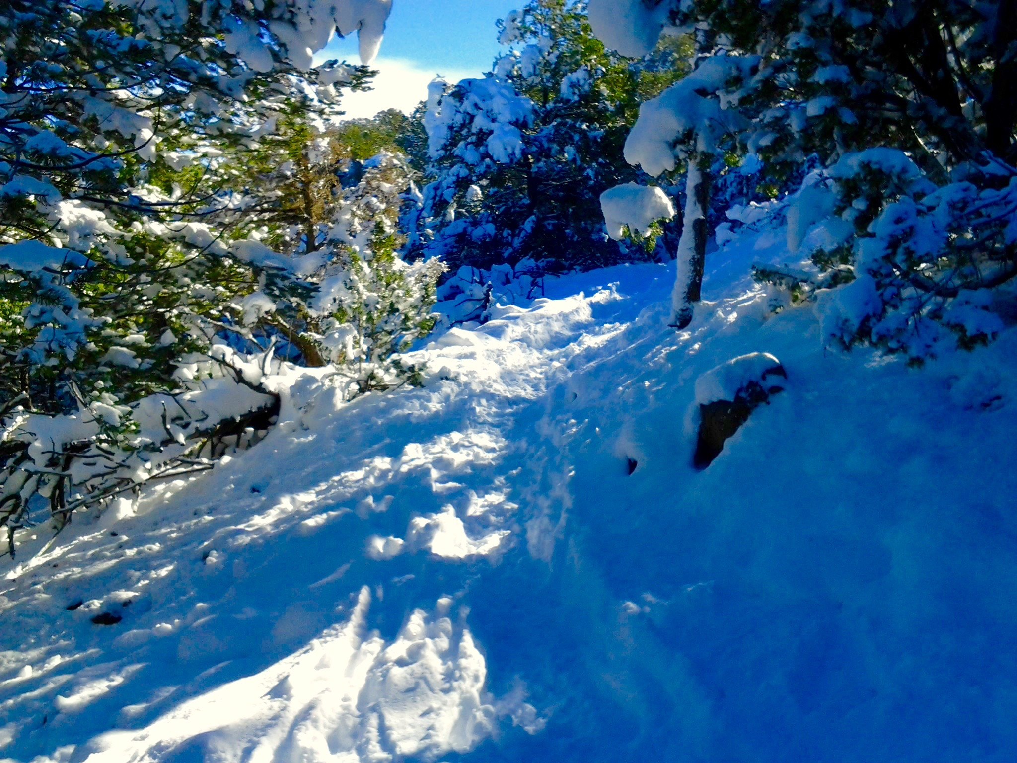 First Big Snowfall in Taos