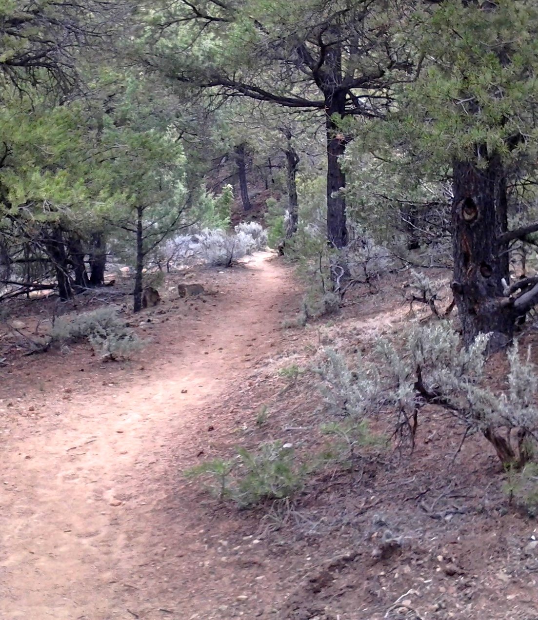 How to Adjust to Changes of Hiking Plans — Backpacking Memories