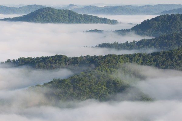 Fog covers Pine Mountian in the Jefferson National Forest as seen from State Route 119, near Whitesburg, Kentucky.