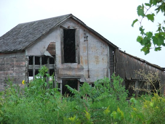 This old barn 004