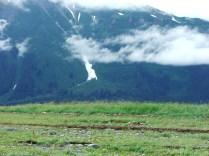 Alaska-20100729-20100807 050