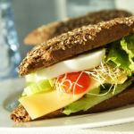 Image of a sandwich for an article about senior meal planning.