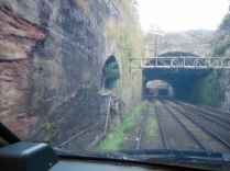 Down in the railway cutting today. You can see areas where the railway authorities had machinery in parts of Williamson's tunnels.
