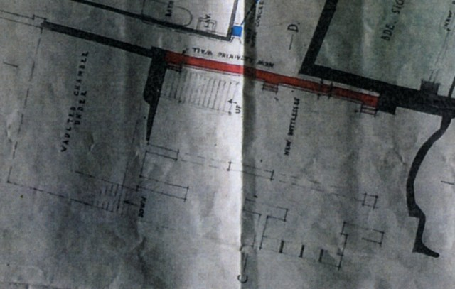 CAI_scan211-close-up