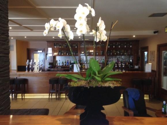 Big Blue Hotel bar