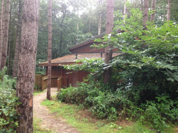 Forest Holidays cabin