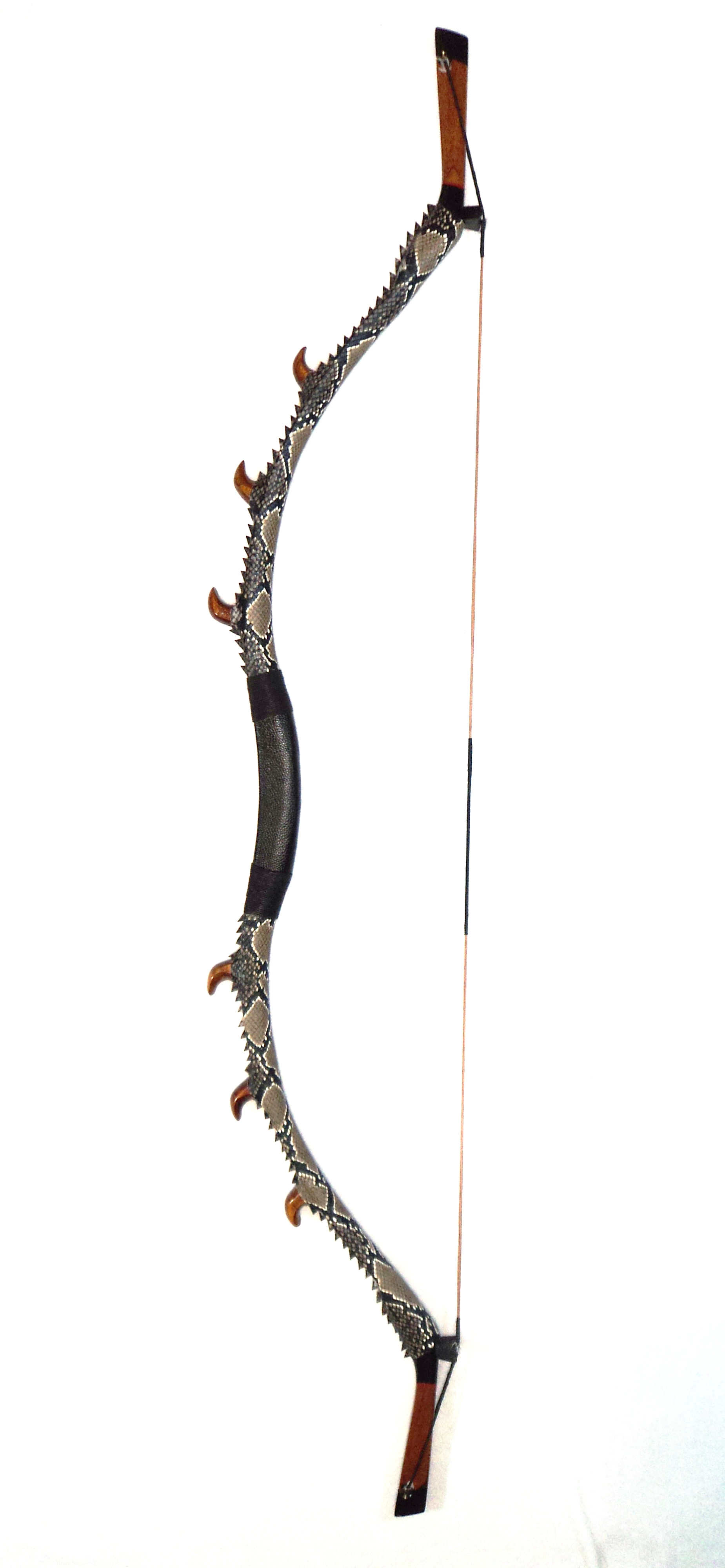 William Tell Archery Supplies Dragon Claw Traditional bow