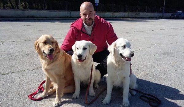 https://i0.wp.com/willingness.com.mt/wp-content/uploads/2021/09/Malta-Dog-Training-Services.jpg?resize=600%2C350&ssl=1