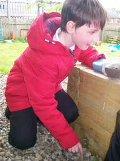 Bug Hotel construction