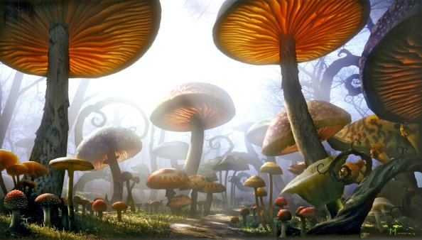 Alice in Wonderland - Scenery, Mushrooms