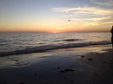 Fort Myers Beach  (24)