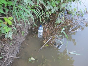 Plastic Bottle on River Shoreline