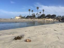 Flippen am Strand