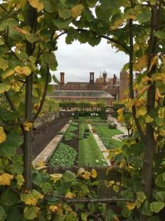 Secret Garden View
