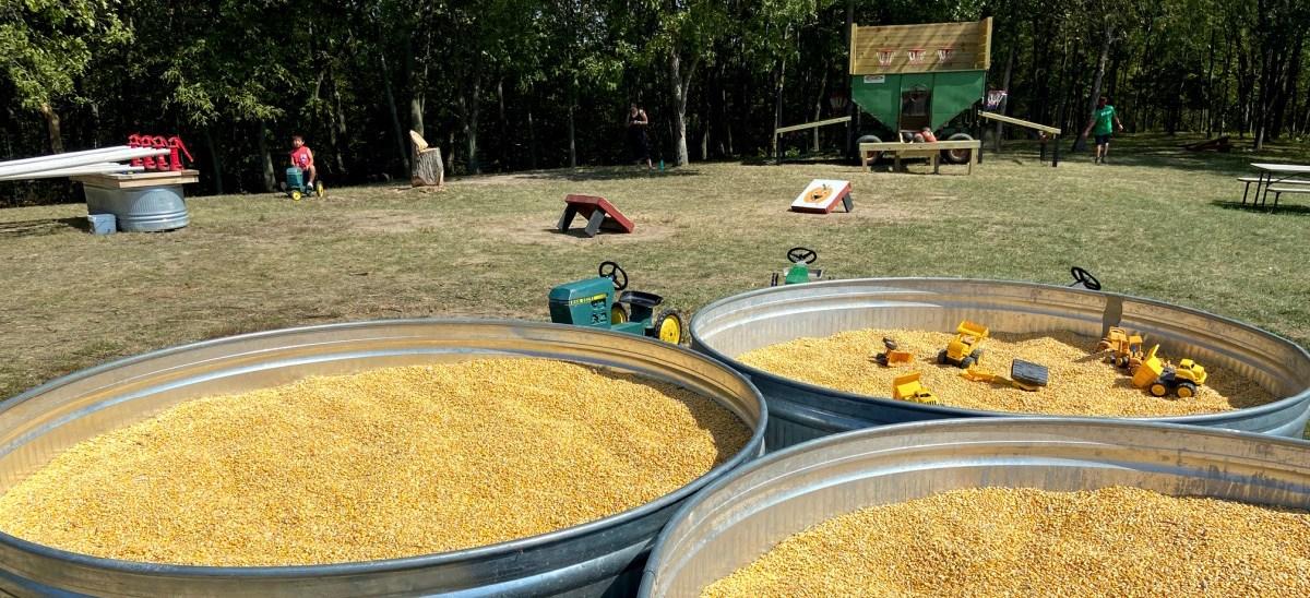 Farm Fun Activities
