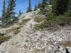 Trail up Baldy Ridge