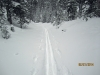 Checking out the Sawmill snowshoe trail