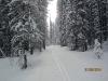 Shininng ski trail