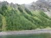 Ridge above Tryst Lake