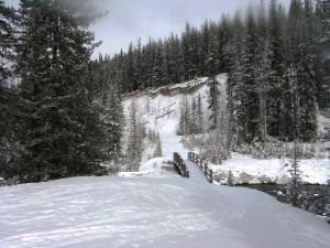 Banff Springs - Cross Country Skiing - Photo # 13