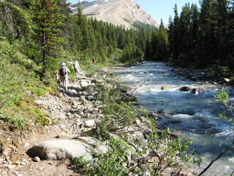 Trail following creek