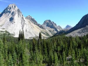 Mt Birdwood, Pigs Tail & Commonwealth Peak