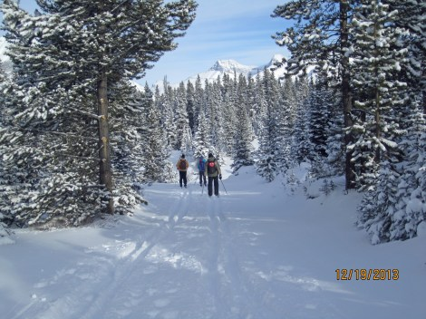 Conditions on side trails