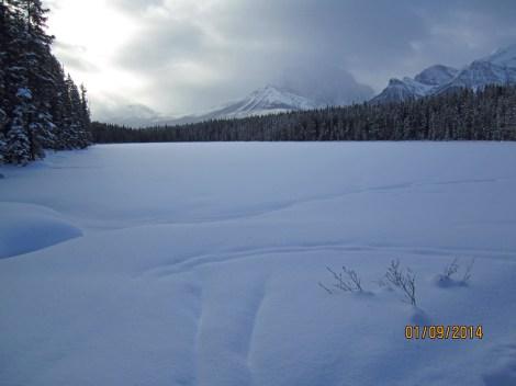 Short excustion 0.4 km to Mud  Lake