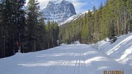Cross Country Skiing Moraine Lake Road Lake Louise.