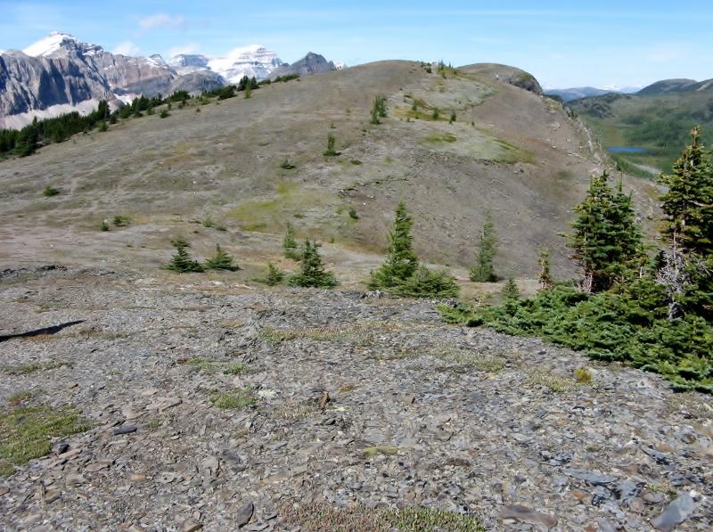 The ridge top of The Ramparts