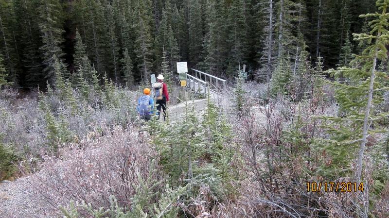 Trail Head for Buller Pass