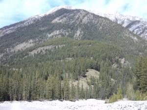 Lady MacDonald Mountain