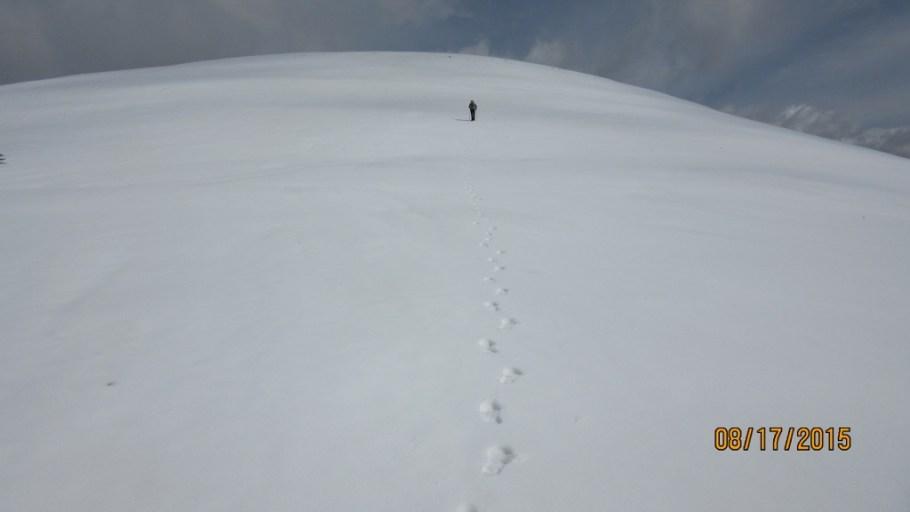 Lee on his way to Observation Peak