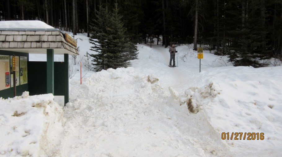 Trail Head at Mt Norquay Parking