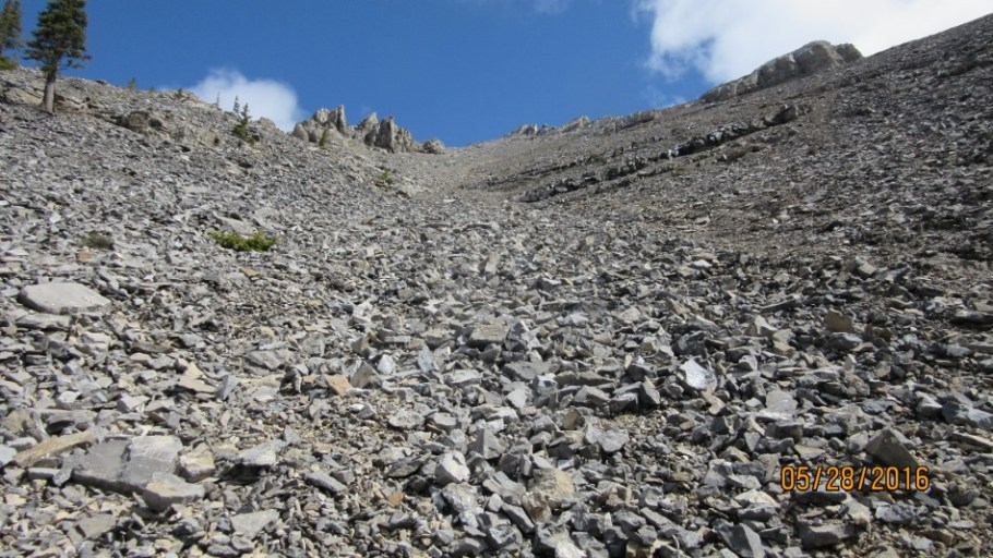Great scree for coming down but up go left to ridge