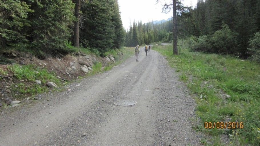 trail in from Fish Creek to Skoki Lodge