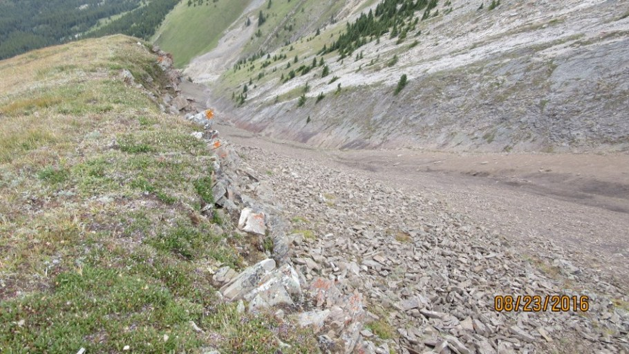 it may be possable to come up this gully from Picklejar Lakes trail
