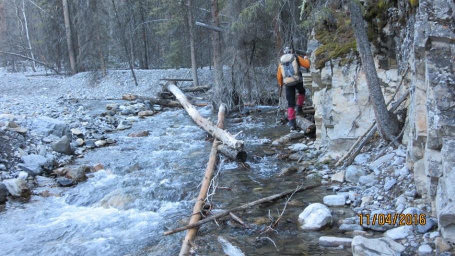 Navigating Carrot Creek