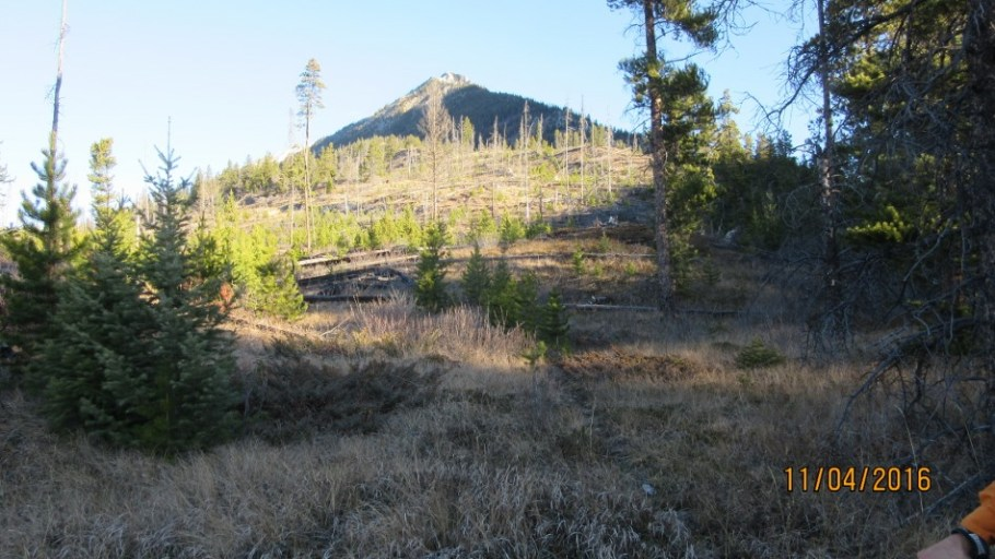 Start of the first ridge from the creek