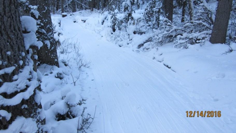 Fox Creek a bit bumpy and uneven