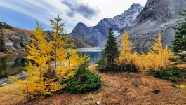 Burns Lake via Arethusa Circ