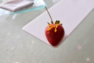 Enigma Concept - Demistrawberry