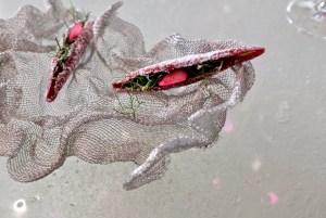 Enigma Concept - Raspbery pod, quinoa, fennel