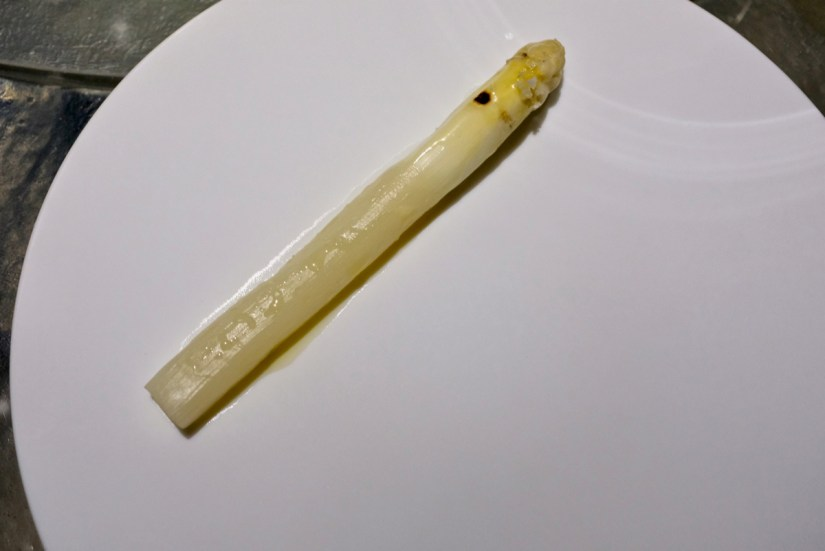 Enigma Concept - The White Asparagus